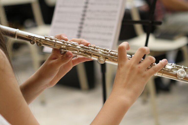 Příčná flétna